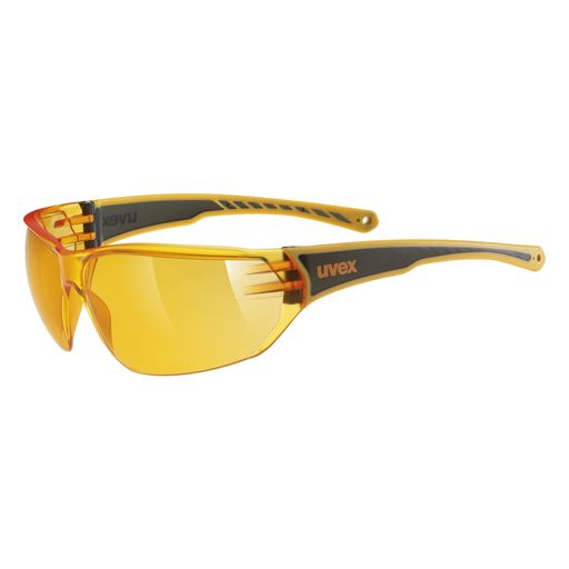 SPORTSTYLE 204 lunettes